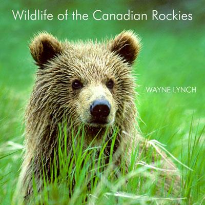 Wildlife of the Canadian Rockies Book by Dr. Wayne Lynch